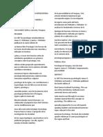 LA PSICOLOGIA PARAGUAYA REPRESENTADA EN LA PSICOLOGIA.docx