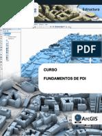 Estructura_PDI