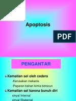 Apoptosis.en.Id