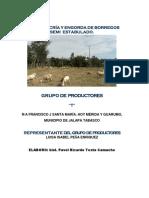 Proyecto Cria y Engorda de Borregos Merida y Guarumo Jalapa