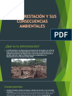 Deforestacion y Consecuencias
