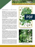 7d983cf52cb98bd6e04001011e011da0.pdf