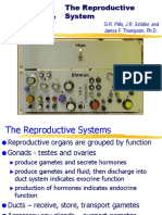Chapter 27 - Reproduction