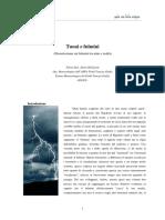 Fulmini.pdf