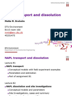 12330-B1-NAPL-transport-2019