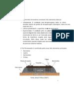 DocGo.net-Patologias Em Ferrovias