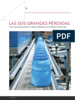 LAS SEIS GRANDES PÉRDIDAS EN MANT..PDF