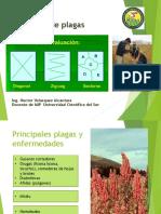 Tema 4 Manejo Ecologico Plagas.ppt