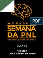 Workshop-Semana-da-PNL-aula-03.pdf