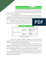 texto para transformar no texto da nathalia.docx