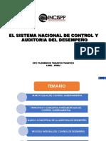 Sistema Nacional de Control y Auditoria Del Desempeno