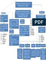 Mapa Conceptual Evidencia 1