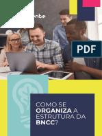 Como se organiza a estrutura da BNCC.pdf