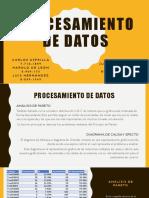 Procesamiento de Datos [Autoguardado]