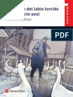 Muestra-LabioTorcido 3.pdf
