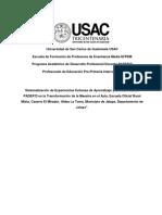 Informe de Sistematización 2019
