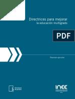 Resumen Ejecutivo Directrices Educación