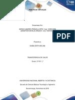 Colaborativo Practicas 211611 7