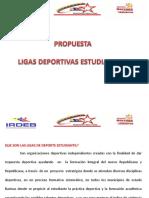 Proyecto Liga Estudiantil 2010.