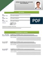 24-hoja-de-vida-focus-verde (1).docx