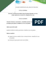 Paso 1-Matriz de Análisis