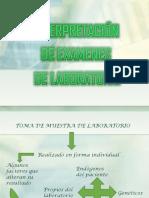 examendelab-120503005003-phpapp01.pdf