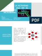 EFECTO DE LA ACTIVIDAD DEL AGUA (Aw)-vol-1.pptx
