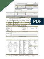 F.81Investigación de accidentes e incidentes V02.pdf