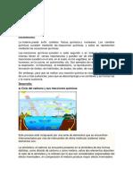 Ciclo Del Carbono y sus reacciones quimicas