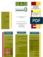 ALIMENTACIONTILAPIA (1).pdf