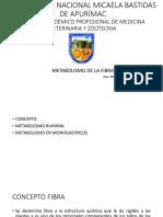 CLASE 4 Y 5 FIBRA y AGV.pdf