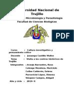 Problemática de Los Centros Culturales de Trujillo