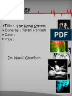 Physiology, Lecture 8, The Renal System (lEcture Notes)
