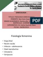 fisiologia ginecologica