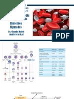 ClaseFisiopatología_Fisiopatologia Hemática