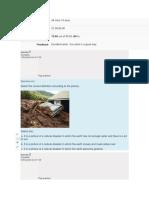 Quiz_2 Ingles B-1.pdf