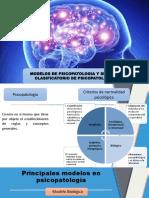 NEUROPSICOPATOLOGIA