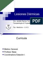 Lesiones dermicas