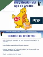 Analisis de Rgo Creditocooperativa Ok