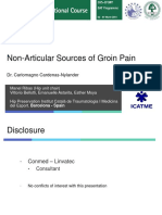 Non Articular Source of Groin Pain