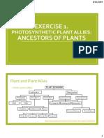 Photosynthetic Plant Allies