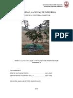 Informe de Hojarasca Final