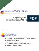 Work Team 2019