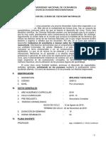 CCNN CR 2019-3.pdf