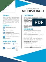 Nidhish Raju Resume New Update