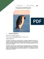 Pingu i No Emperador