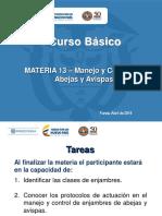 Materia 13 Av - Manejo y Control de Abejas y Avispas