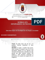 APA 2019.pdf
