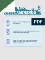 01 CAMINANDO 6