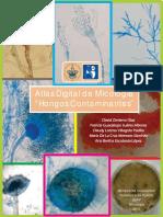 Atlas de MICOLOGÍA (Hongos Contaminantes ISBN)